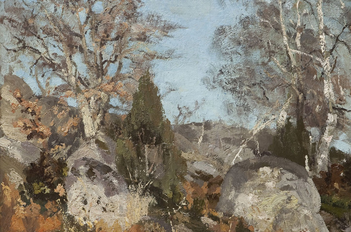 Andreescu - Rocks and Birch Trees